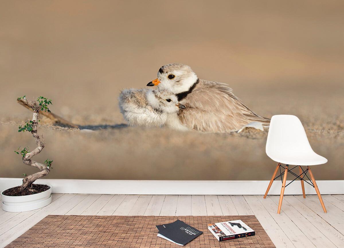 Bird mom with chick
